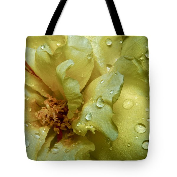 Yellow Moss Rose 1 Tote Bag by Karen Musick