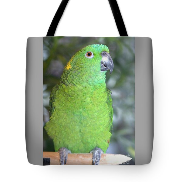 Tote Bag featuring the photograph Yellow-naped Amazon by Debbie Stahre