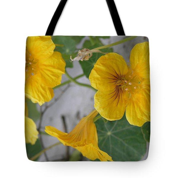 Yellow Nasturtium Tote Bag