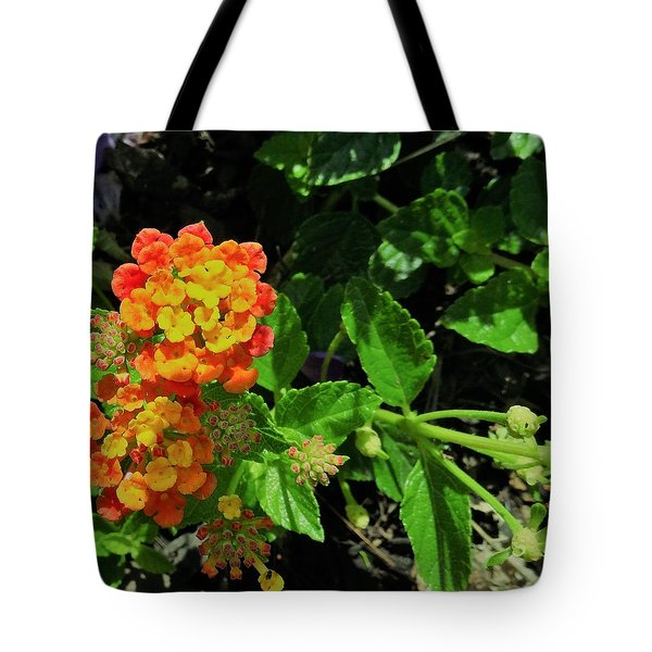 Yellow-orange Lantana Tote Bag