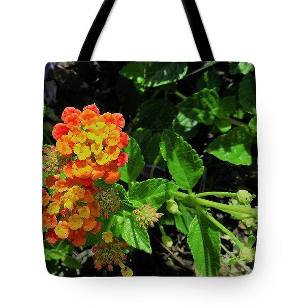 Yellow-orange Lantana Tote Bag