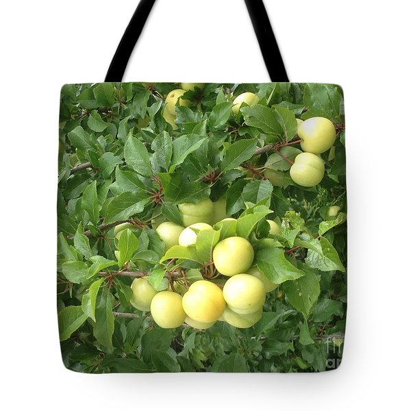 Yellow Plums Tote Bag by Kim Prowse