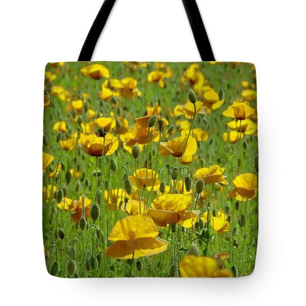 Yellow Poppy Field Tote Bag