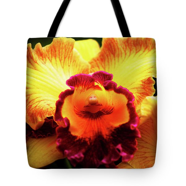 Yellow-purple Orchid Tote Bag