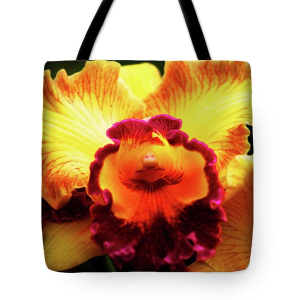 Tote Bag featuring the photograph Yellow-purple Orchid by Anthony Jones