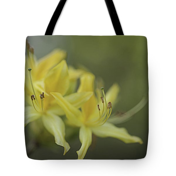 Yellow Rhodo Tote Bag