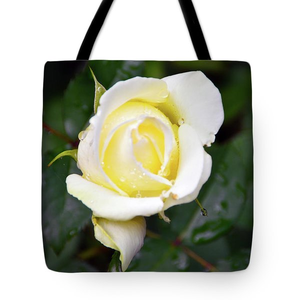 Yellow Rose 1 Tote Bag