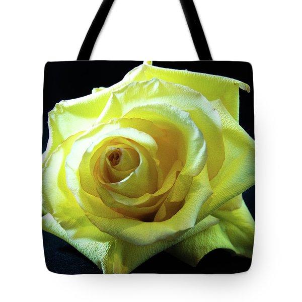Yellow Rose-7 Tote Bag
