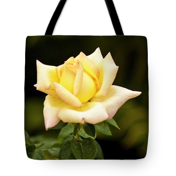 Yellow Rose Tote Bag by Bill Barber