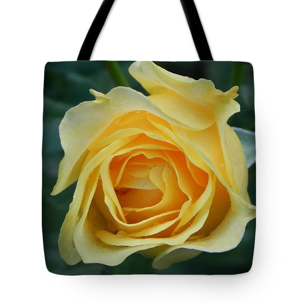 Yellow Rose Tote Bag by John Parry