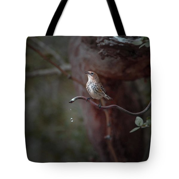 Yellow-rumped Warbler At Water Spout Tote Bag by Debra Martz