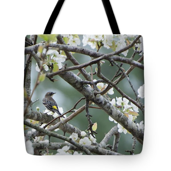Yellow-rumped Warbler In Pear Tree Tote Bag