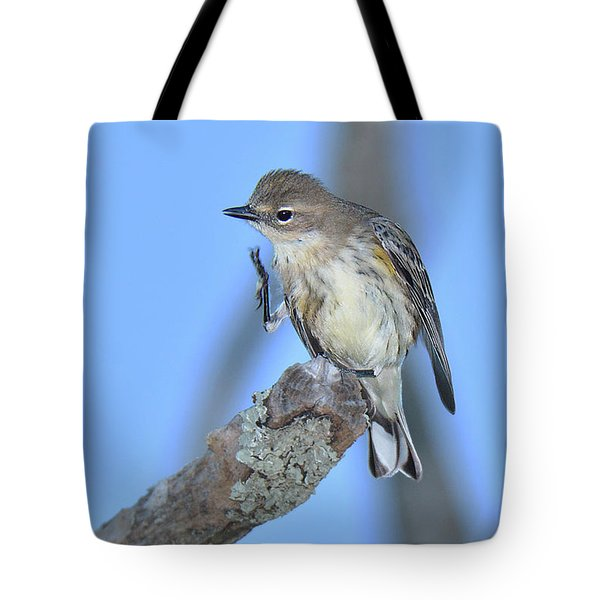 Yellow-rumped Warbler Itch Tote Bag