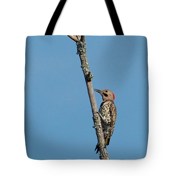 Yellow Shafted Flicker Tote Bag