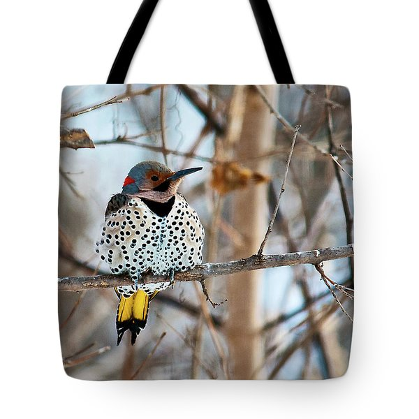 Yellow-shafted Northern Flicker Staying Warm Tote Bag