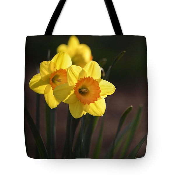 Yellow Spring Daffodils Tote Bag