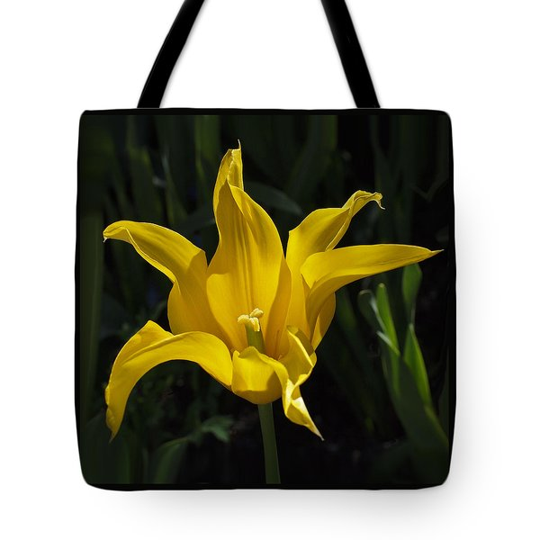 Yellow Star Tulip Tote Bag by Rona Black