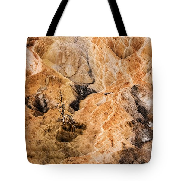 Tote Bag featuring the photograph Yellow Stone National Park Abstract by Mae Wertz