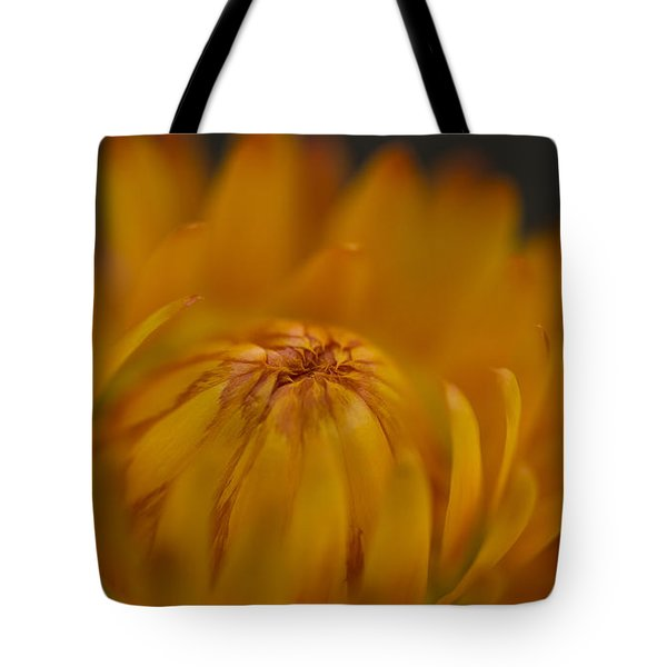 Yellow Strawflower Blossom Close-up Tote Bag