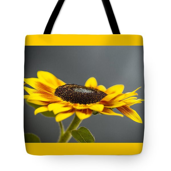 Yellow Sunflower Photograph Tote Bag