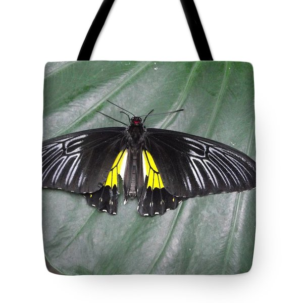 Golden Birdwing Tote Bag