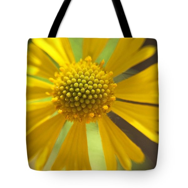 Tote Bag featuring the photograph Yellow Texas Wildflower Macro by Robyn Stacey