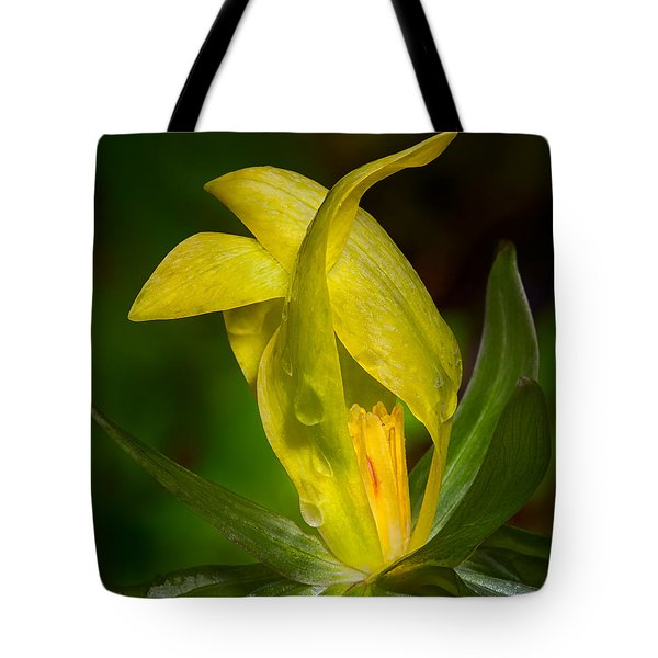 Yellow Trillium Tote Bag by Tyson and Kathy Smith