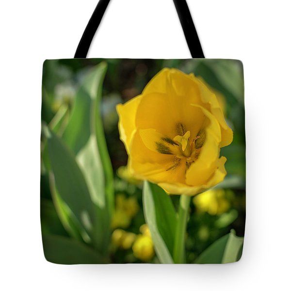 Tote Bag featuring the photograph Yellow Tulip by Keith Smith