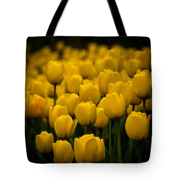 Tote Bag featuring the photograph Yellow Tulips by Jay Stockhaus