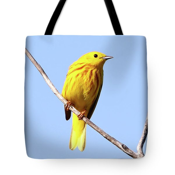 Yellow Warbler #1 Tote Bag by Marle Nopardi
