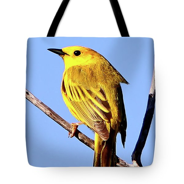 Yellow Warbler #2 Tote Bag by Marle Nopardi