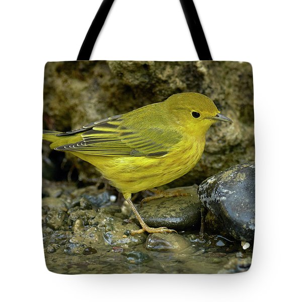 Yellow Warbler Tote Bag by Doug Herr
