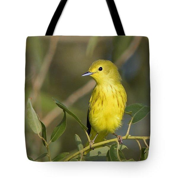 Yellow Warbler Tote Bag