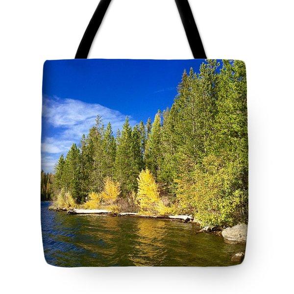 Golden Waters Tote Bag by Jennifer Lake