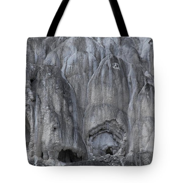 Yellowstone 3683 Tote Bag