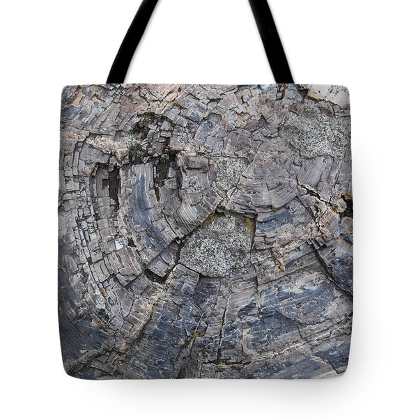 Yellowstone 3707 Tote Bag