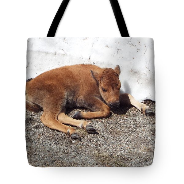 Yellowstone Bison Calf  Tote Bag