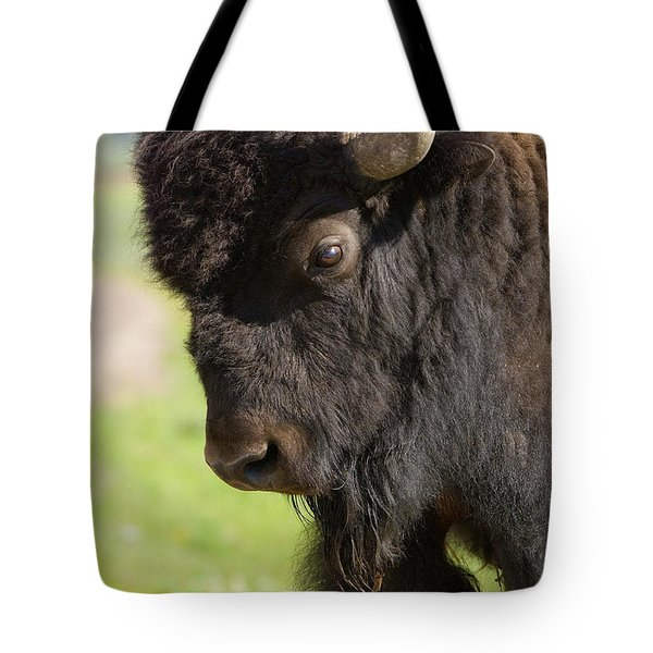 Yellowstone Bison Portrait Tote Bag by Sandra Bronstein