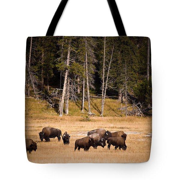 Yellowstone Bison Tote Bag by Steve Gadomski