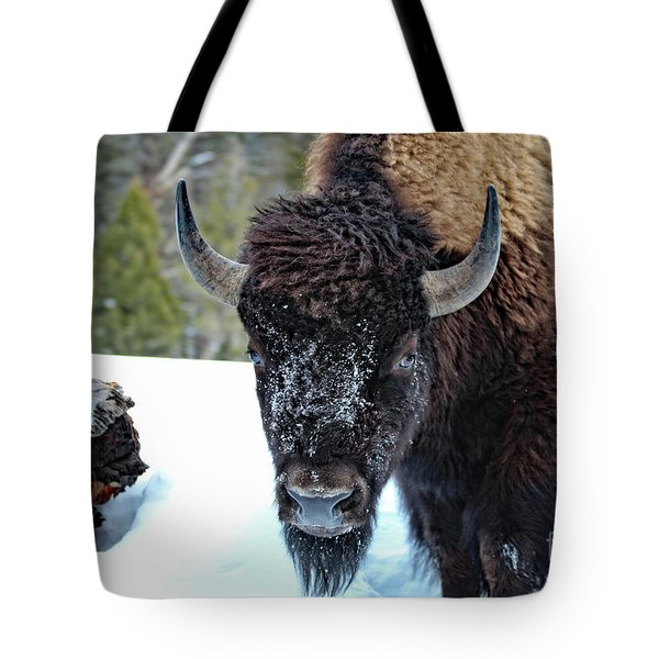 Yellowstone Buffalo Stare-down Tote Bag