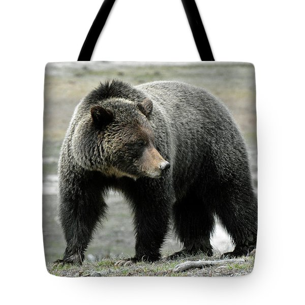Tote Bag featuring the photograph Yellowstone Grizzly A Pondering by Bruce Gourley