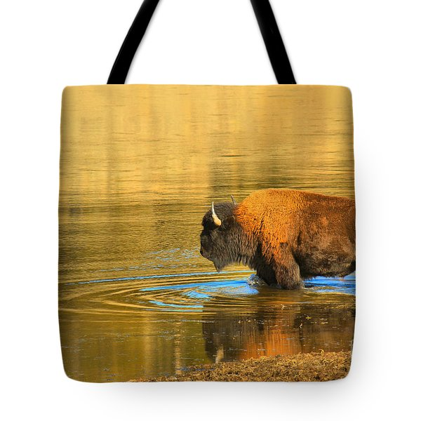 Tote Bag featuring the photograph Yellowstone Solo Swimmer by Adam Jewell