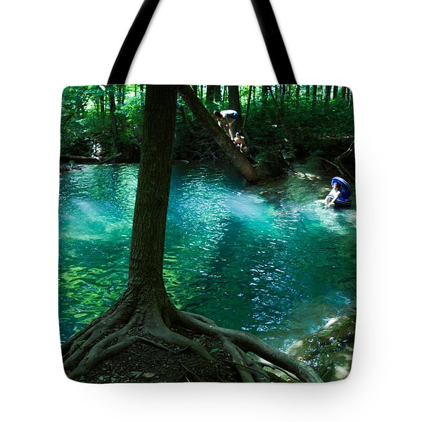 Yesterday, When I Was Young Tote Bag