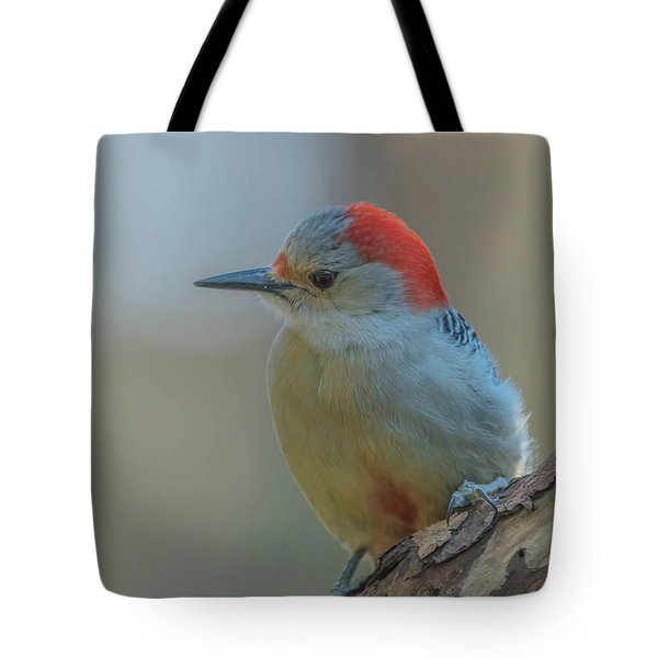 Young Red Bellied Woodpecker Tote Bag