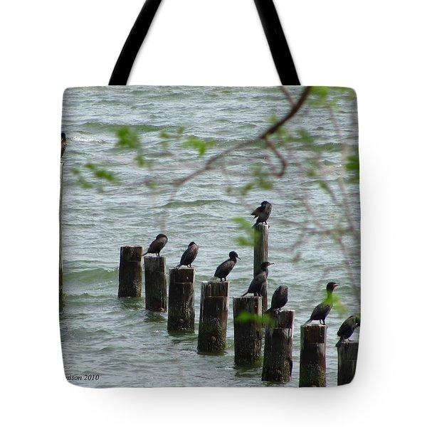 York River Cormorants Tote Bag