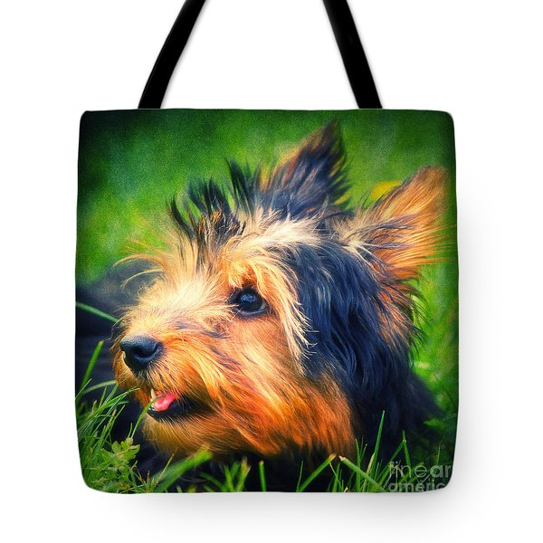 Yorki Tote Bag by Angela Doelling AD DESIGN Photo and PhotoArt