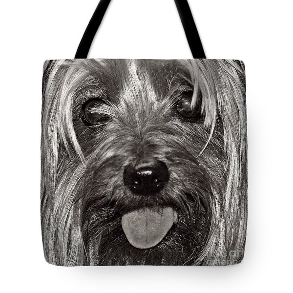Tote Bag featuring the photograph Yorkie Closeup Black N White by Terri Mills
