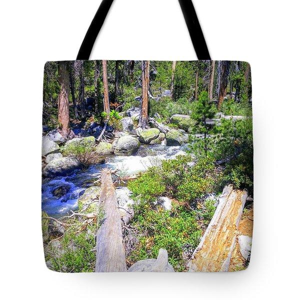 Yosemite Adventure Tote Bag