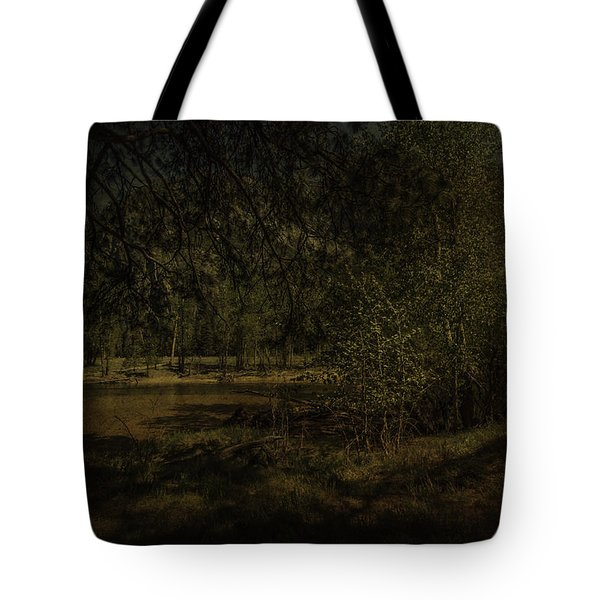 Tote Bag featuring the photograph Yosemite National Park by Ryan Photography