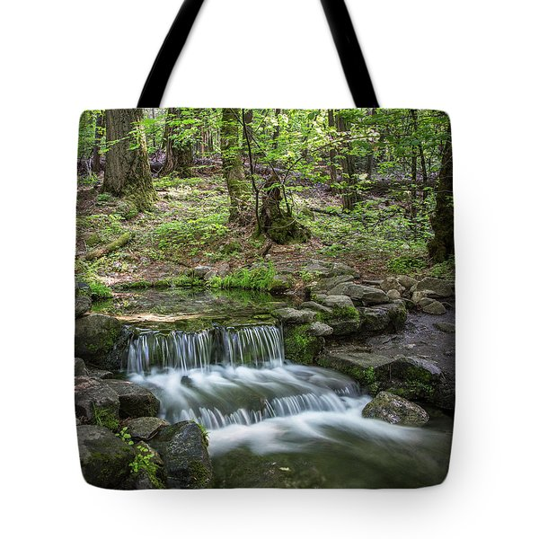 Yosemite View 23 Tote Bag